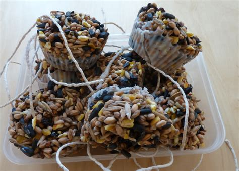 guest post homemade bird seed cakes emmy s mummy
