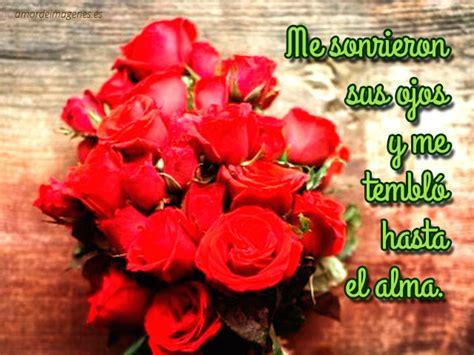 imágenes con frases de buenos días para mi amor im 225 genes de rosas con frases de amor