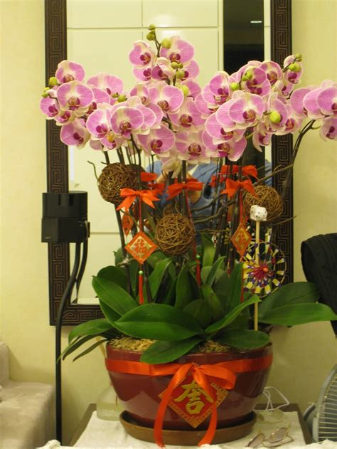 chinese new year decoration ideas for home 17 best images about cny 新年插花 on pinterest floral