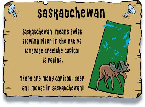 chuckles the saskatchewan prairie dog catcher canadian