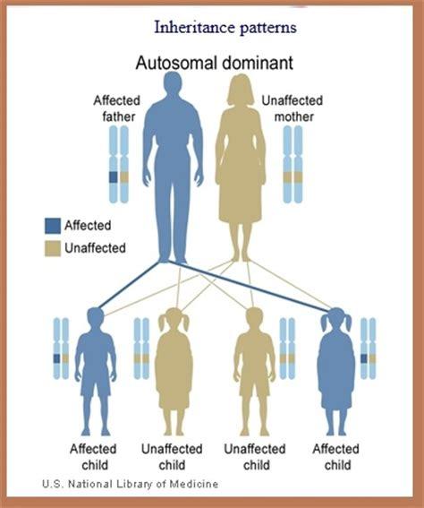 pattern dystrophy wiki autosomal dominant inherited pattern free patterns