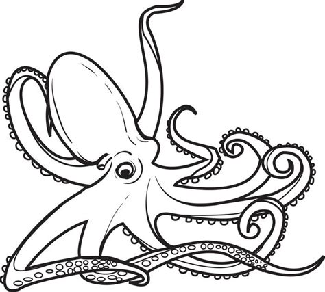 free coloring pages of octopus