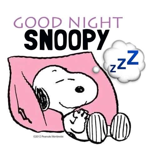 snoopy decke 667 best peanuts images on