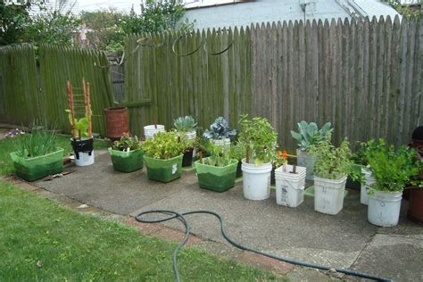 Container Vegetable Gardening Designing Your Container Vegetable Container Gardening