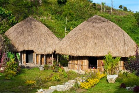 yuk kenali budaya indonesia inilah rumah adat papua