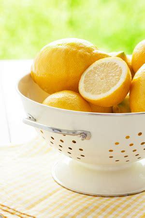 come coltivare i limoni in vaso limoni in vaso come curarli tutti i segreti leitv