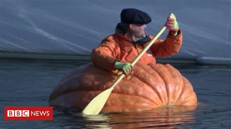 pumpkin boat pumpkin boat paddled down river ouse in york bbc news