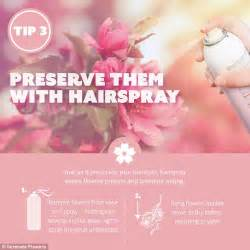 how do flowers last simple tips to make fresh cut flowers last longer daily mail