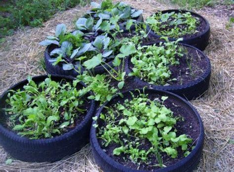 intensive vegetable gardening 10 intensive gardening methods that really work to