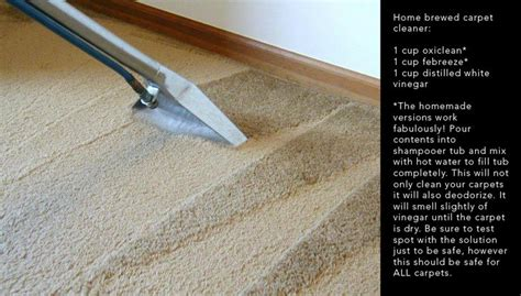 diy carpet cleaning solution for the house