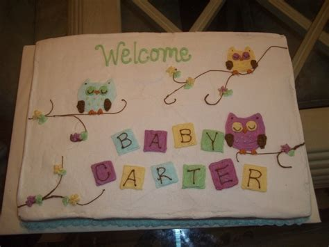 baby owl baby shower cake cakecentralcom