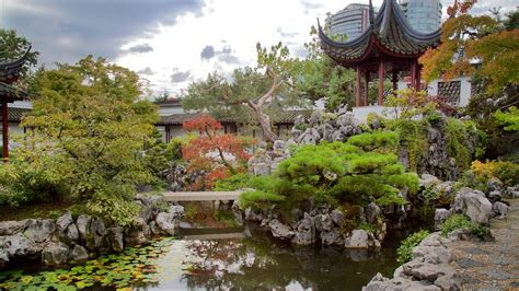 dr sun yat sen classical garden in vancouver