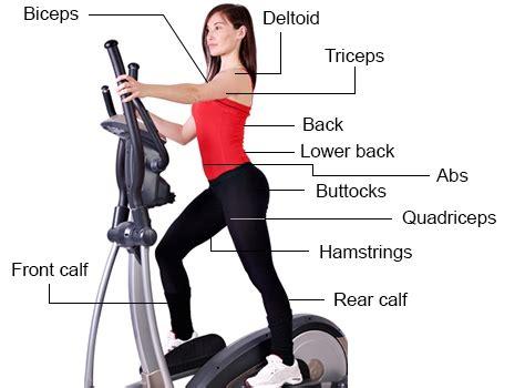 will an elliptical trainer me tone my waist optimum fitness