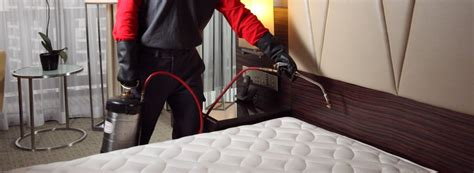 Exterminators For Bed Bugs by Bed Bug For Your Business Rentokil Pest