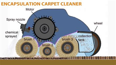 encapsulation process for carpet cleaning whittaker smart care 174 trio carpet cleaning system