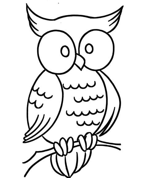 template of owl owl template animal templates free premium templates