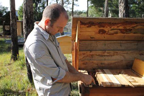 kenyan top bar beehive natural beekeeping with kenyan top bar hives bega district news
