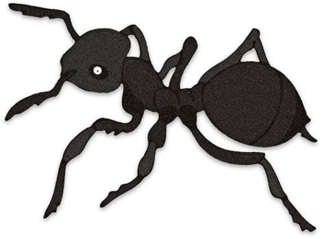 ant clipart black ants