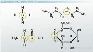 pattern matching organic molecules introductory biology 1 2 bonds