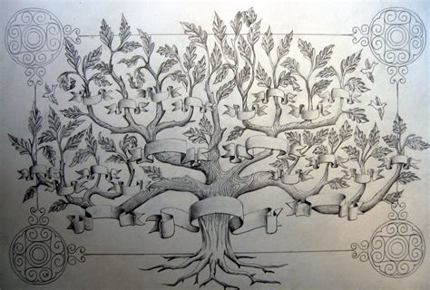 drawing a family tree template 10 best images of free family tree images drawings free