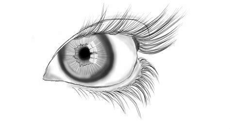 eye line art by bitts2010 on deviantart