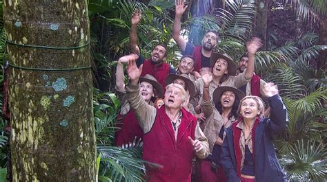 celebrity jungle who is out the great big i m a celebrity jungle quiz 2017