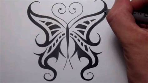 cool tattoo designs to draw drawing a cool tribal butterfly design