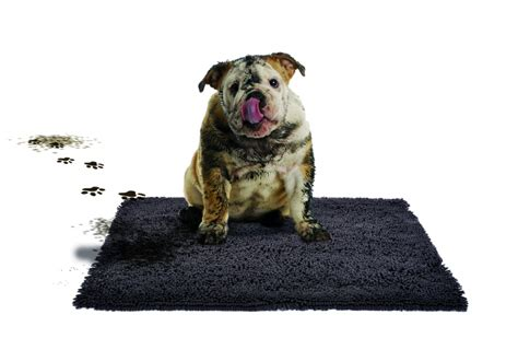 the magic clean mat honden kussens en manden outletbentelo