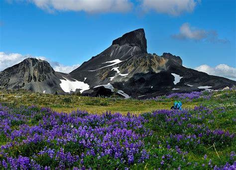 Image result for British Columbia