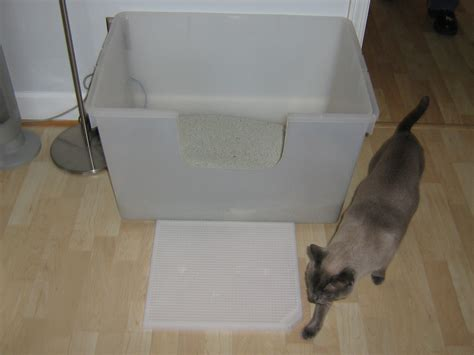 Cat Stool Outside Of Litter Box by Litter Boxes Get The Scoop What How Many And Where
