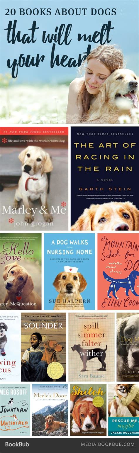 picture books about dogs 22 best images about books worth reading on