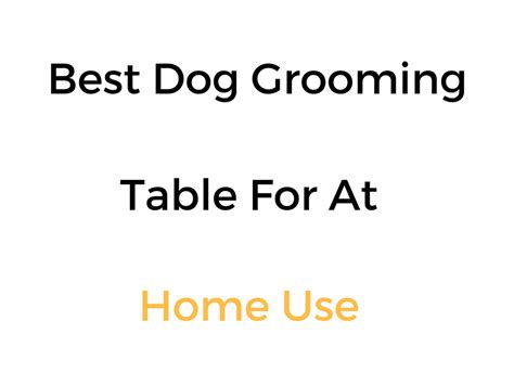 Best Grooming Table For At Home Use Reviews Buyer S