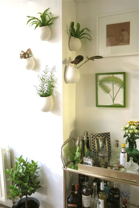 indoor wall garden indoor wall garden love indoor gardening pinterest