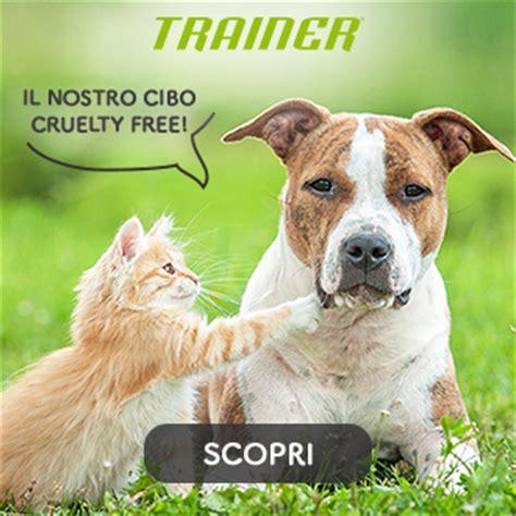 alimenti cani cruelty free amici cani e gatti la community degli amici di cani e gatti