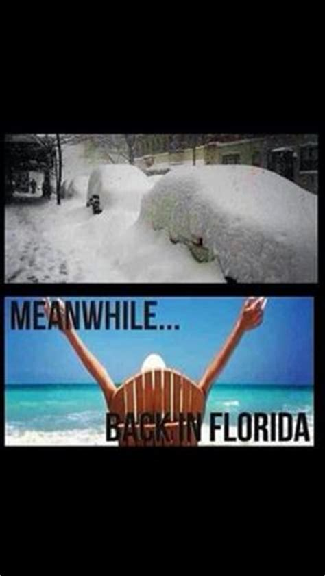 Florida Winter Meme - 1000 images about winter in florida on pinterest winter