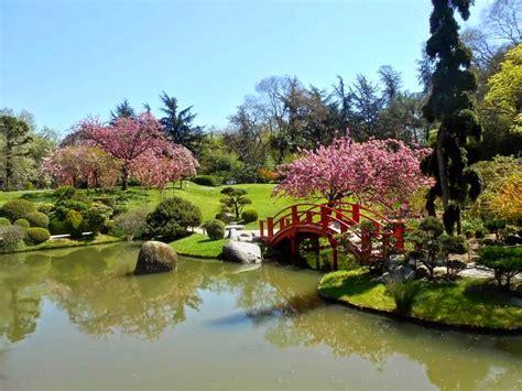 Charmant Jardin Japonais Chez Soi #2: 10985418.jpg
