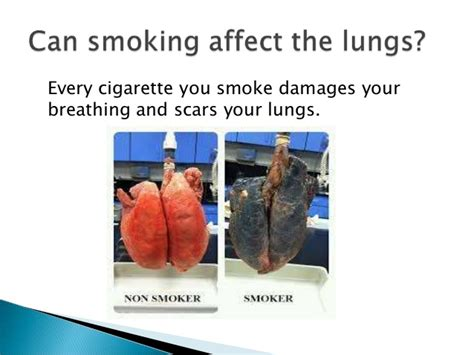 Can You Smoke Cigarettes While Detoxing For A Test by Introduction 2nd Smoke Components And Danger
