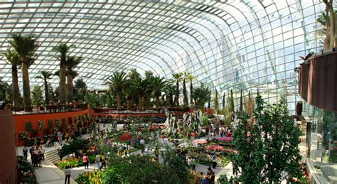 futuristic singapore garden  reinvents  city