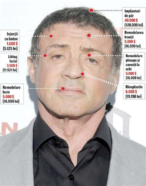 Aubeau Eye Brow By Yobel Cosmetics pictures of sylvester stallone picture 118672 pictures