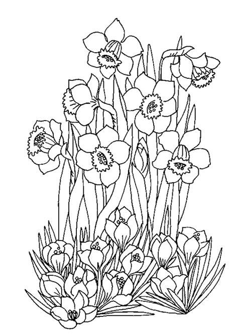 Coloriage Les fleurs du printemps