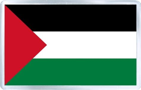 Flags Of The World Green White Black | at the un palestinian raise their flag red black white