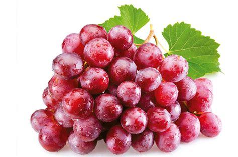imagenes de uvas y frases propiedades de las uvas cocina vital