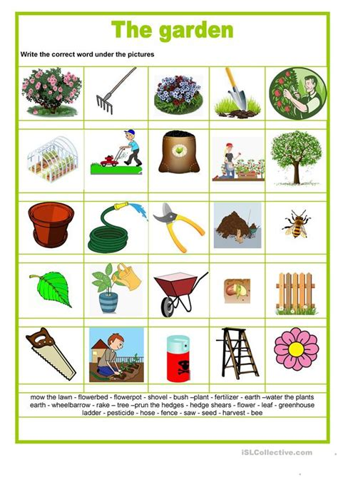 picture dictionary  garden english esl worksheets