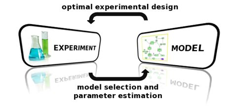 experimental design model selection past projects information science and engineering group