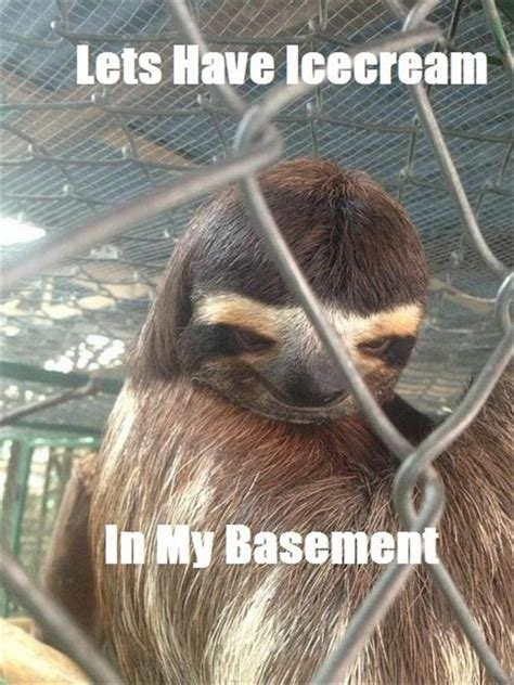 Funny Sloth Memes - sloth animal funny quotes quotesgram