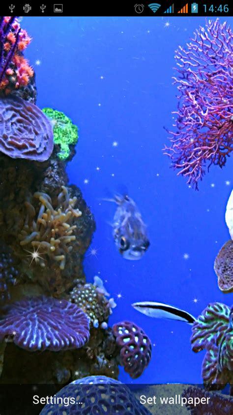 wallpaper animasi android ikan download gratis akuarium gambar animasi gratis akuarium