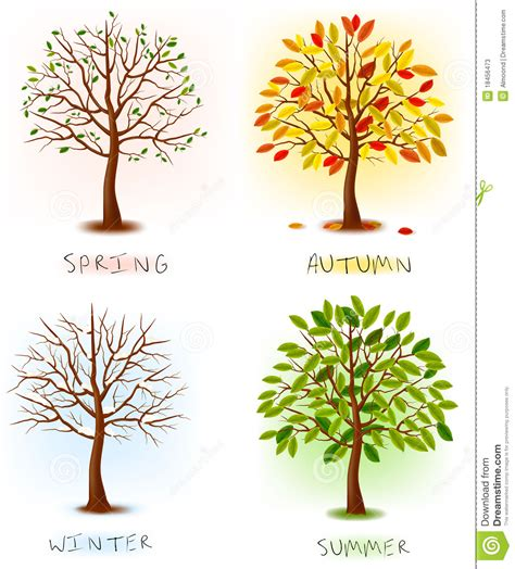 imagenes de otoño primavera verano cuatro estaciones resorte verano oto 241 o invierno
