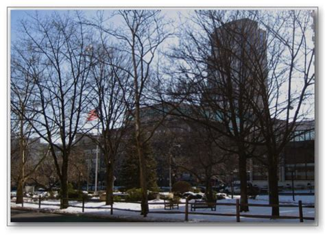 Tree Shop White Plains - introducing white plains ny 10601 the county seat of