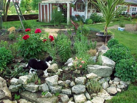 Rock Gardens Ideas 17 Best Images About Rock Garden Ideas On Pinterest