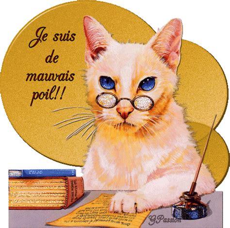 regarder oscar et le monde des chats regarder streaming vf en france gifs lunettes le blog de lemondedesgifs over blog